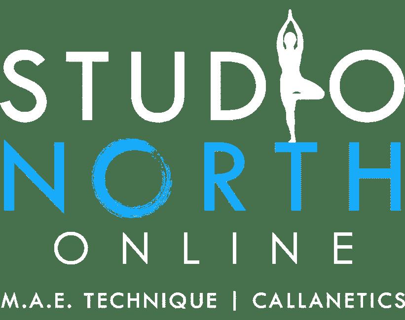 studio-north-online-logo-header